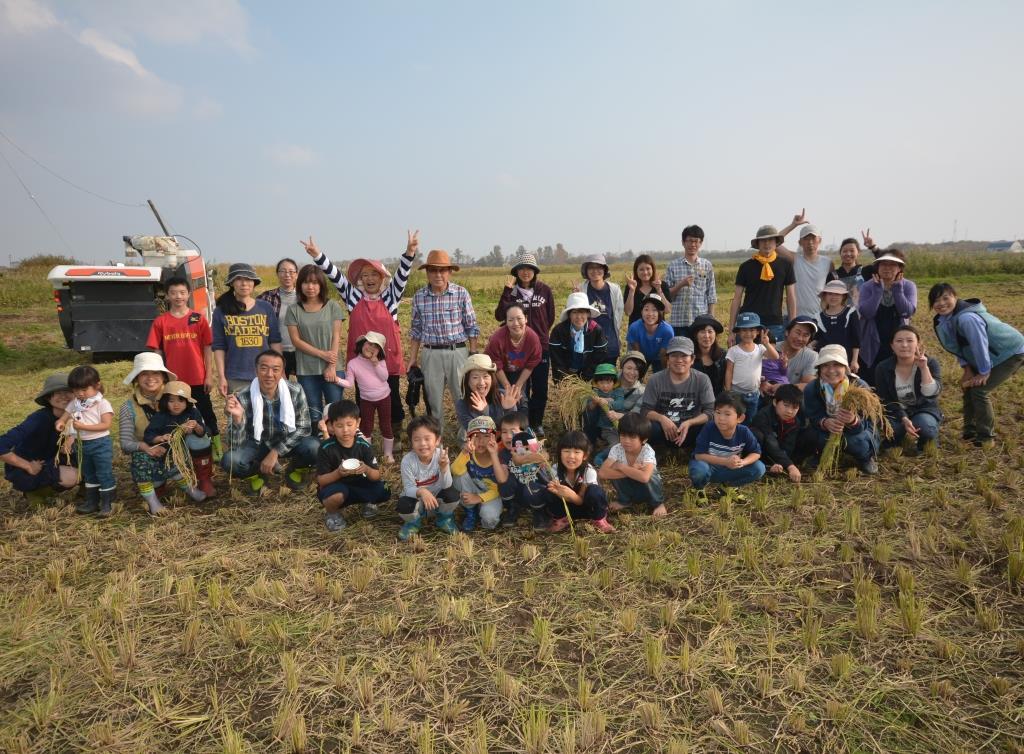 今年も50人で稲刈り体験!