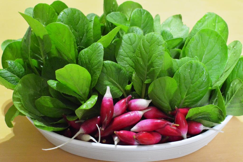 小松菜を間引いて食べる!&野菜の花。