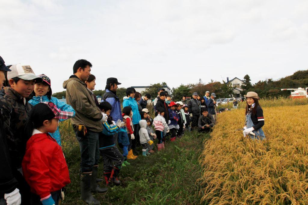 2015年10月11日(日)稲刈り&野菜ランチバイキング参加者募集中!