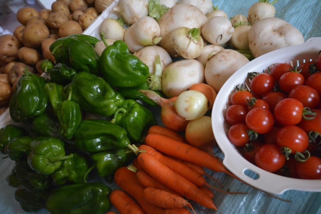 今年も収穫どっさり。イモ、ピーマンは納得。タマネギ、ナス、ミニトマトは不満。