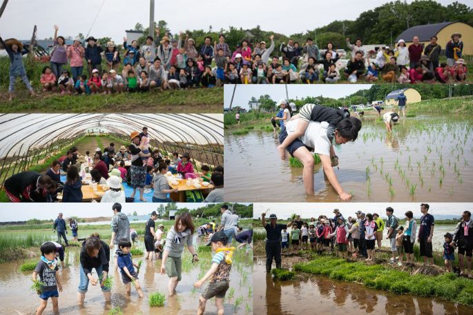 2019年6月16日 田植え参加者大募集!