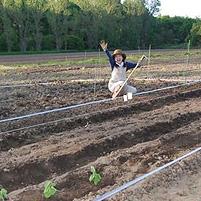 トマトの植え方を学ぶ&るるる♪キッチンガーデンの6月2日作業記録